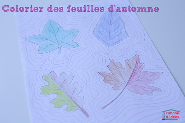 coloriage-feuille-automne