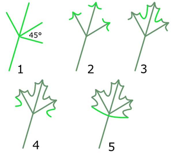 trace-feuille-2