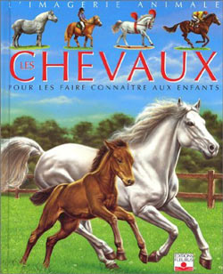 chevaux-imagerie-animale