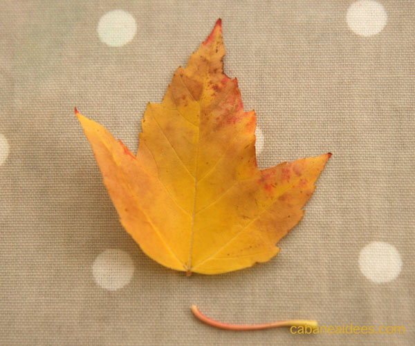 couronne-feuilles-tige