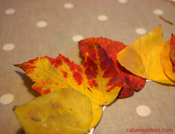couronne-feuilles-zoom