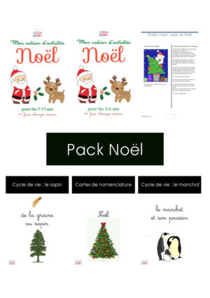 pack des ebooks de Noël